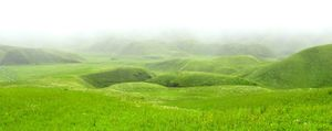 Dzukou Valley: The serene hills #northeastitinerary