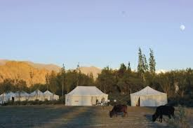Tsermang Eco Camp - An Open House in #lehladakh #camping