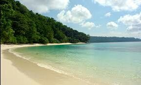 The Exotic Andamans - A Trip in which I truly discovered Nature #lifechangingtrip #nature