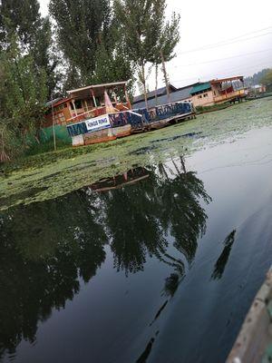 Dream lake : Dal lake
