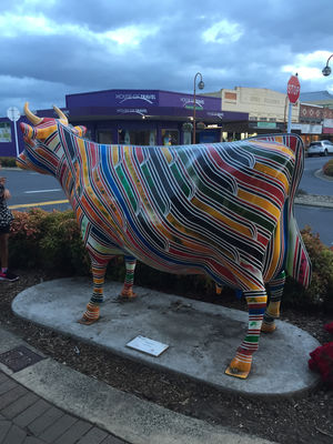 Morrinsville 1/undefined by Tripoto