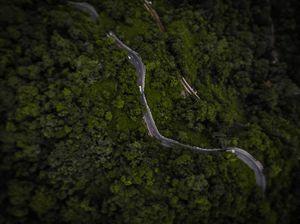The Nilgiris : A beautiful abode #westernghatsinphotos