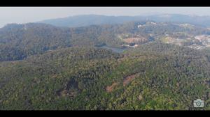 This Aerial view of Kodaikanal is stunning!