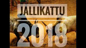 Jallikattu 2018 : Quick look in 2 minutes | Soul & Fuel |