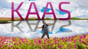 Kaas | Plateau of Wonders | #BestofMaharashtra