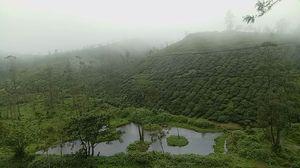 Vandiperiyãr  #kerla #mothernature #trekking #travel #backpacking #nomadiclife #incredibleindia