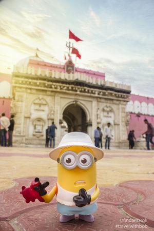 Mr. BOB at Karni Mata Temple, Bikaner, Rajasthan #Bikaner #TravelWithBOB #Minion #Travel #Tripoto