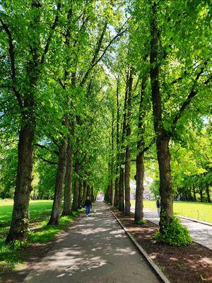 The famous sculpture park of Oslo.