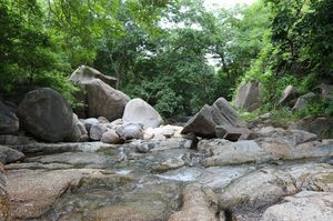 it's wonderful peaceful place which surrounds by River and nature and also famous for shiv temple.