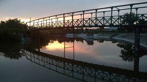 Mirror of nature