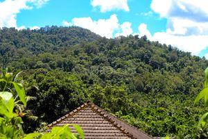 Nature's Paradise - Kalleshwar