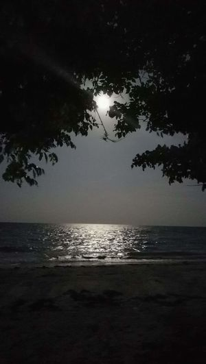 Sparkling sea on a full moon night