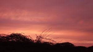 Beautiful red sky sunset at aravali hills in New Delhi