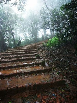stairs to heaven?? ????