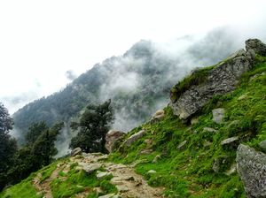 Triund a real heaven ❤