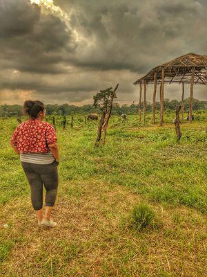 Incredible North Bengal - Photoblog #photoblog #siliguri #northbengal