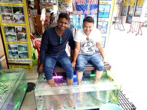 Fish massage......