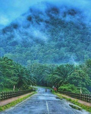 #kodachadri #Hill #peak #Malenadu⛰️????️???? #tripotocommunity #TripotoTakeMeToGoa ????️????????