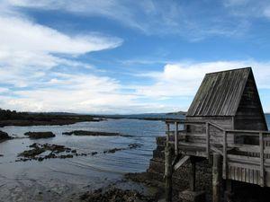 Rangitoto Island 1/4 by Tripoto