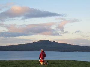 New Zealand - Survival & Travel Tips