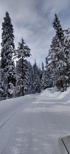The mesmerising ski town of Gulmarg