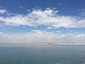 Crowne Plaza Jordan Dead Sea Resort & Spa 1/undefined by Tripoto