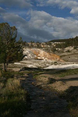 Yellowstone 1/1 by Tripoto