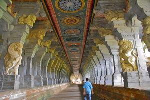 South India: Rameshwaram, Kanyakumari, Kovalam Beach, Kovalam Backwaters