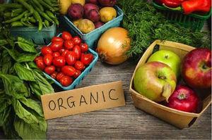 Top 3 'Organic' Cafes in Mumbai!