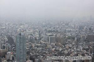 Tokyo Metropolitan Government Building 1/2 by Tripoto