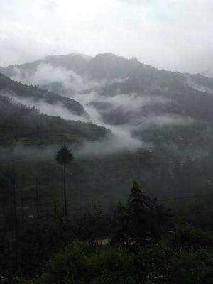 A monsoon treat- Shimla