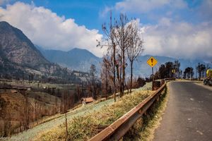Revealing the Best of Cemoro Lawang, Indonesia