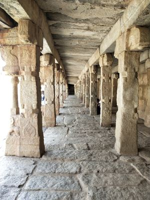 How a flight chase took me to best of vijayanagar dynasty.