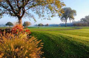 Meadows of Heaven: Byakaravalli(#sakleshpura#karnataka#offbeatdestination)