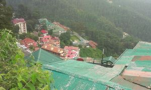 Shimla Rocks