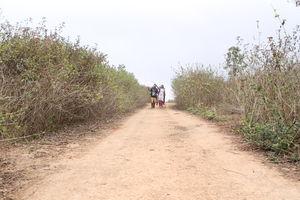 Roads less travelled in Odisha