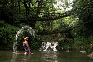 Few days in tropical forests of Meghalaya: Cherrapunjee , Double Decker living root bridge.