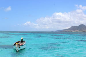 Exotic Mauritius