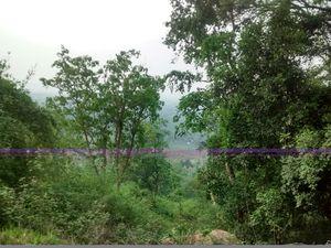 Nilgiri Hills 1/25 by Tripoto