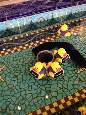 Hotel Triton 1/3 by Tripoto