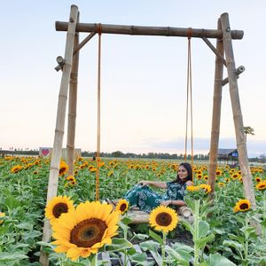 Iloilo City - Day trip to Damires Hills and Happy Farms