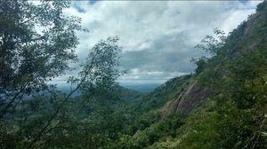 Wayanad -A trip into nature's lap