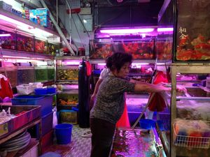 Goldfish Market 1/undefined by Tripoto