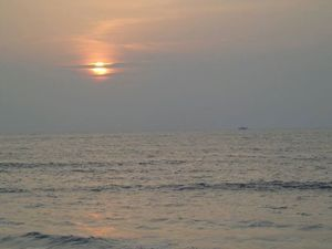 Distant Shores In Calicut