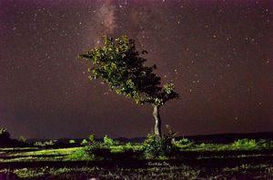 Milky way 1/1 by Tripoto