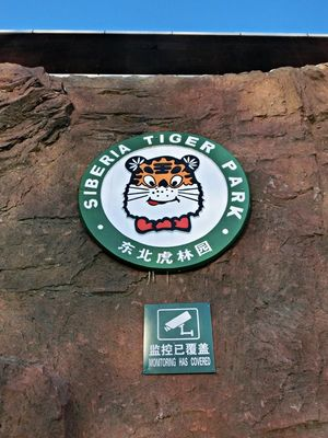 Siberia Tiger Park 1/undefined by Tripoto
