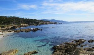 A day in Carmel by the Sea | 17 Mile Drive | California | SFO | USA |