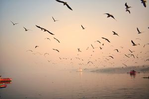 shades of the sky at the beginning of the day at Yamuna ghat (2 days work)