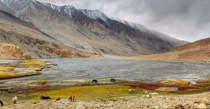 Mesmeric Autumn Trip to Ladakh