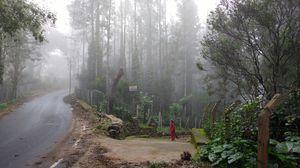 Weekend Getaway to Yercaud from Bangalore